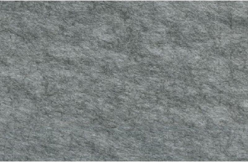 Echopanel surface image